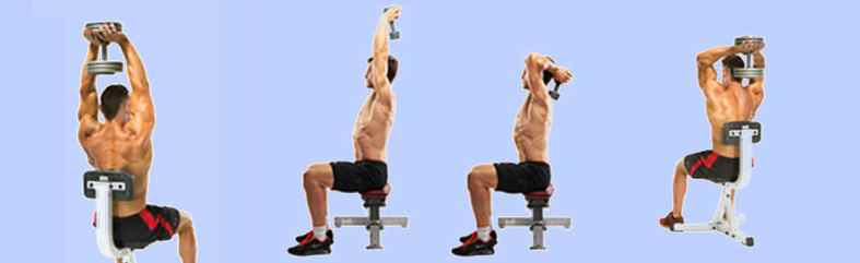 Concentrated Triceps Workouts