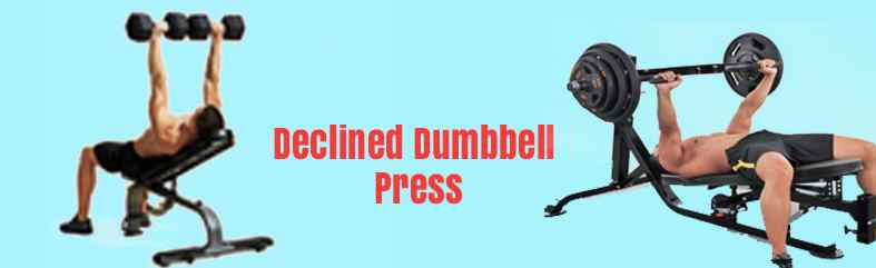 Inclined/Declined Dumbbell Press